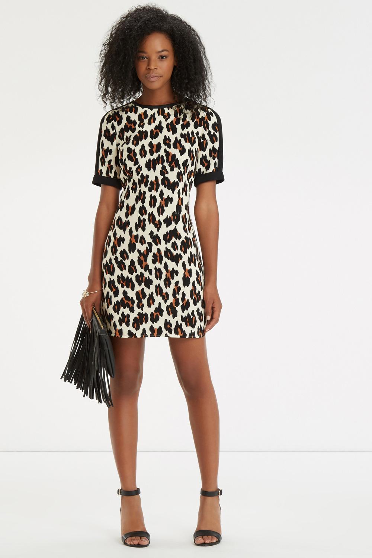 Oasis Synthetic Leopard Print Shift Dress Lyst