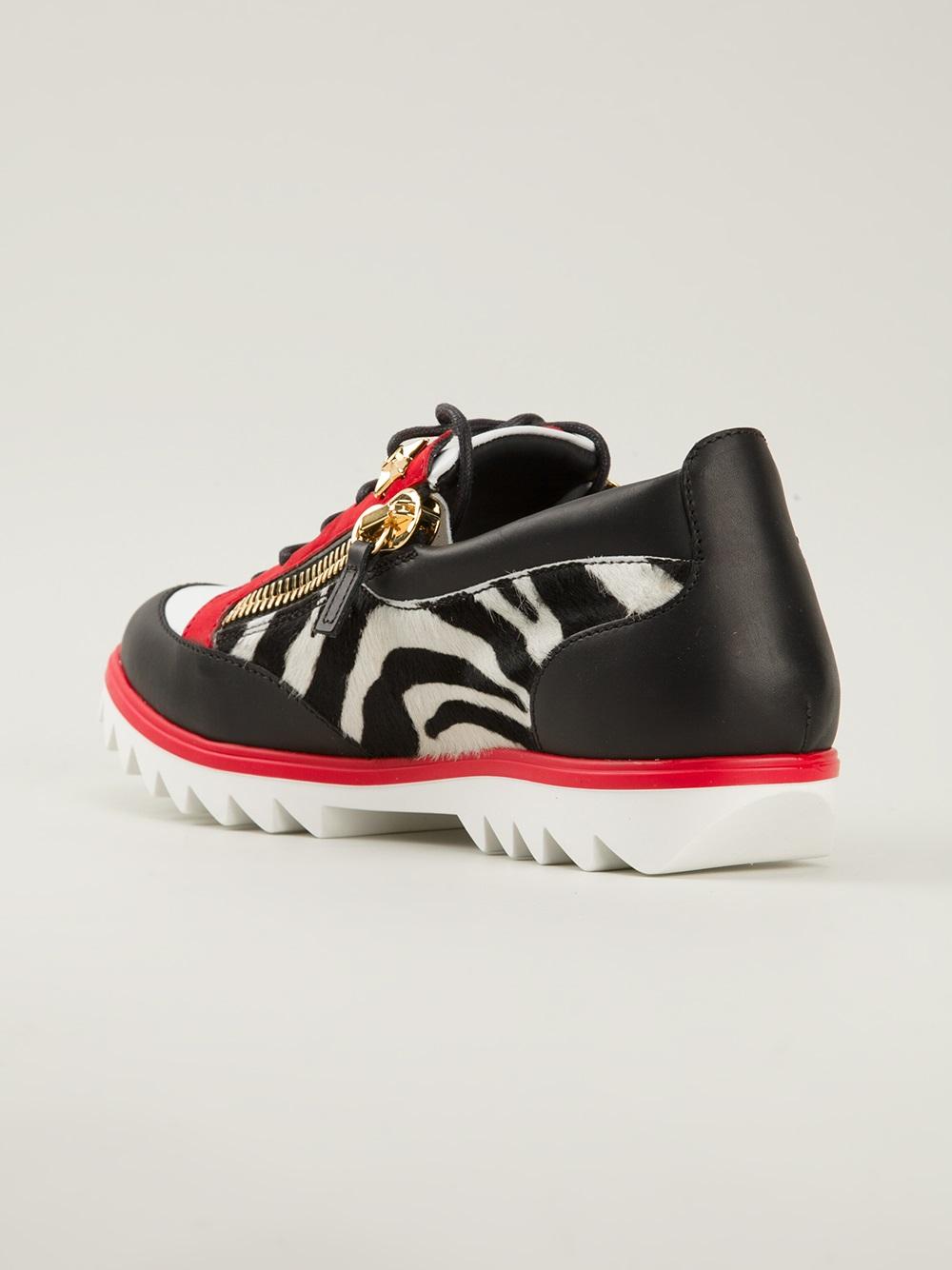 Lyst Giuseppe Zanotti Zebra Print Sneakers In Black For Men