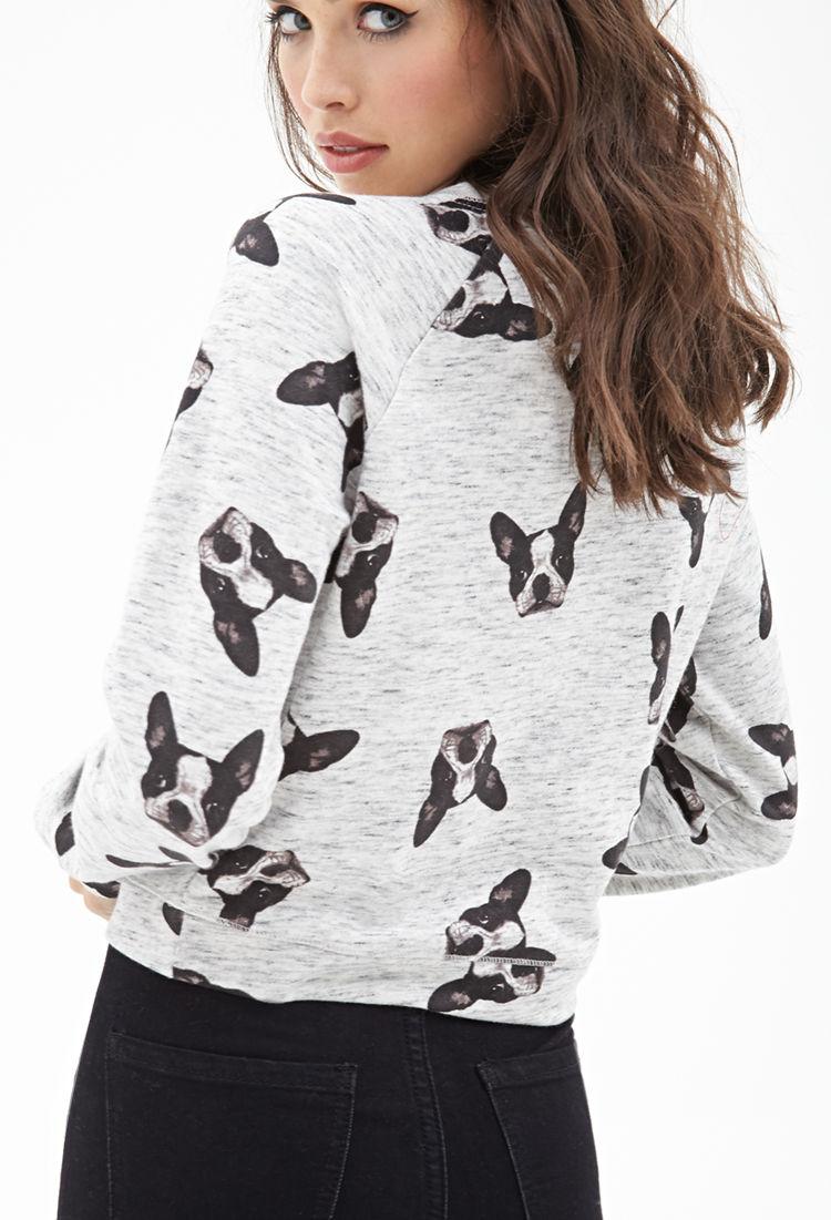 dc60a623b93 Lyst - Forever 21 Boxy Boston Terrier Sweatshirt in Gray