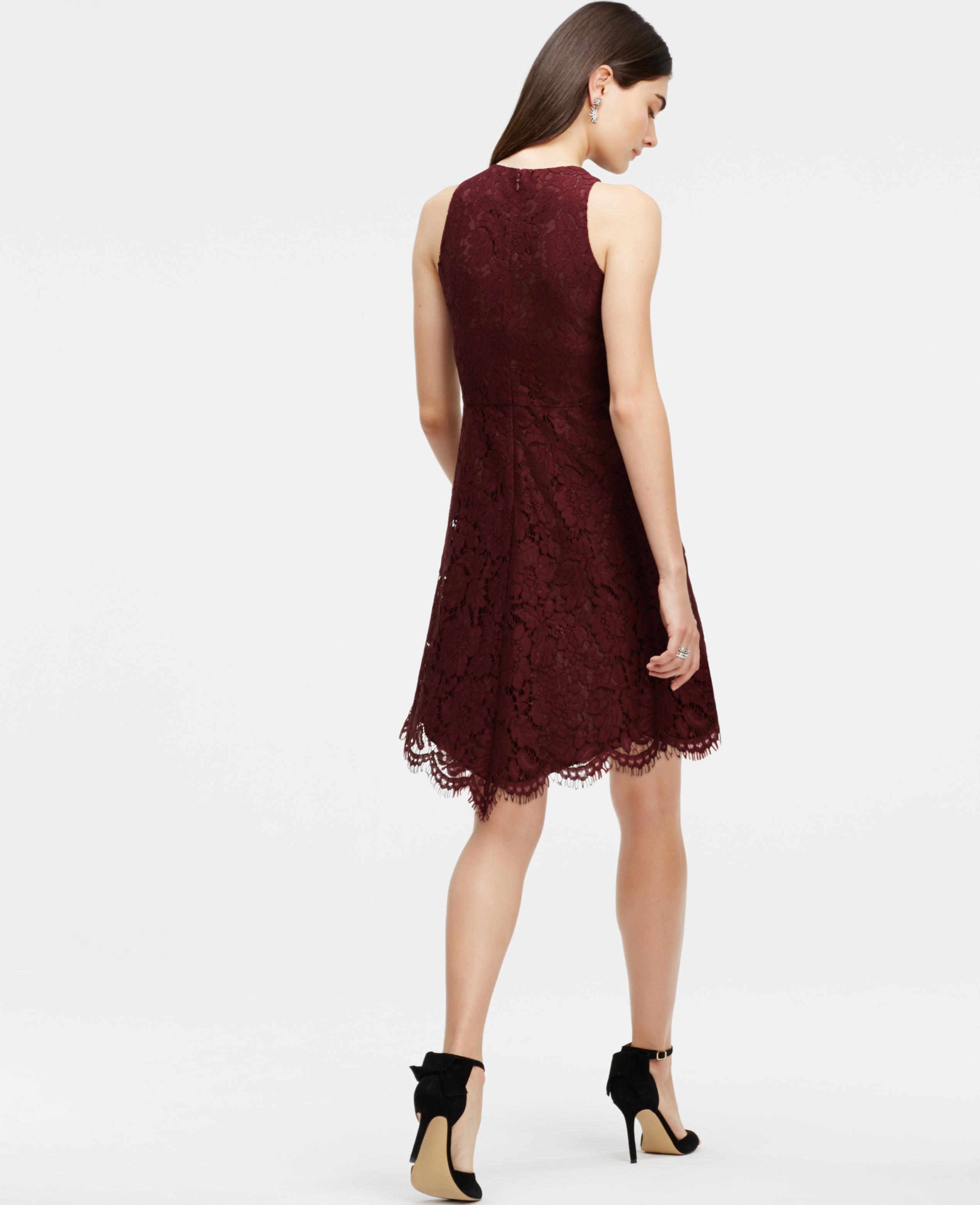 Lyst - Ann Taylor Petite Lace Flare Dress in Purple