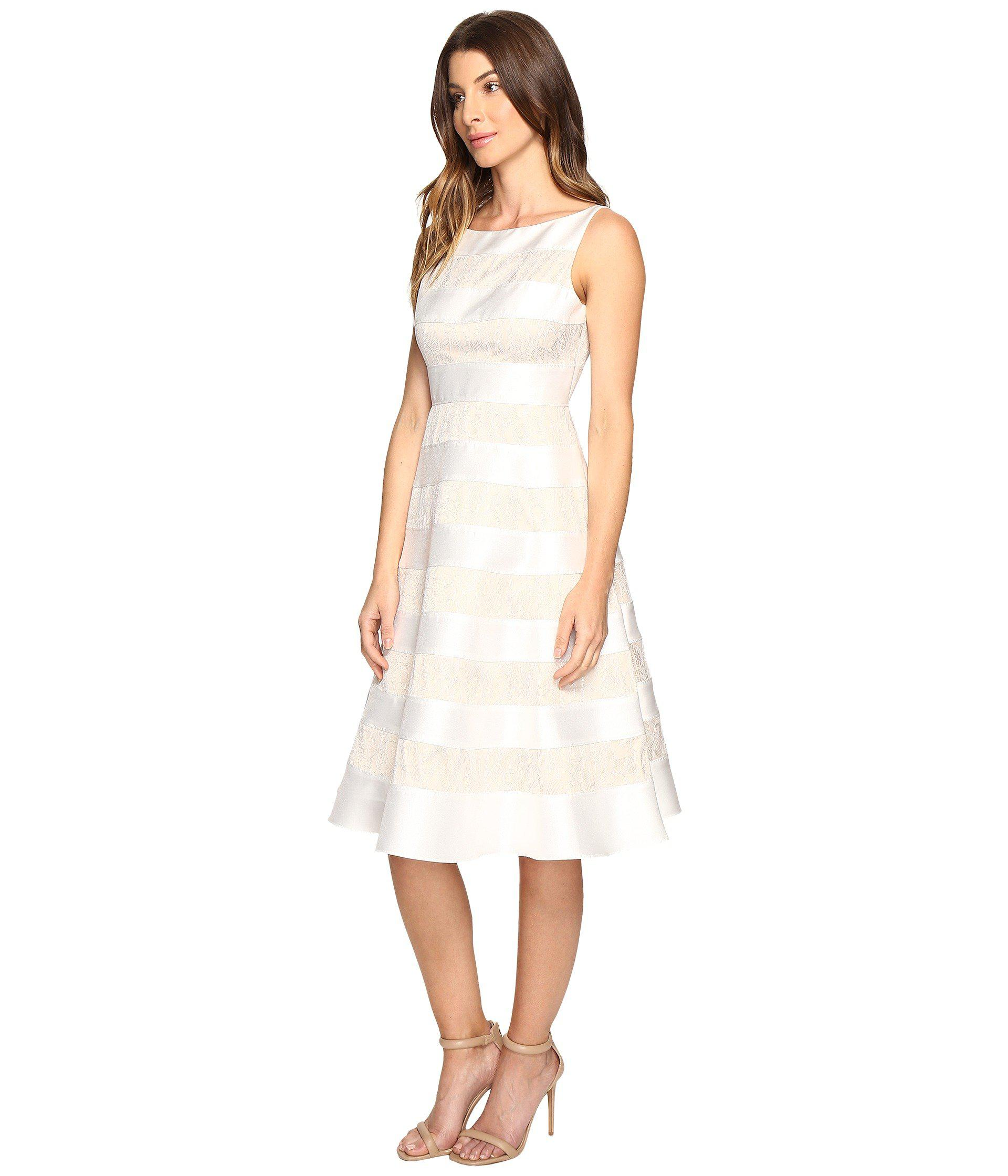 Adrianna Papell Striped Lace Amp Mikado Cocktail Dress In