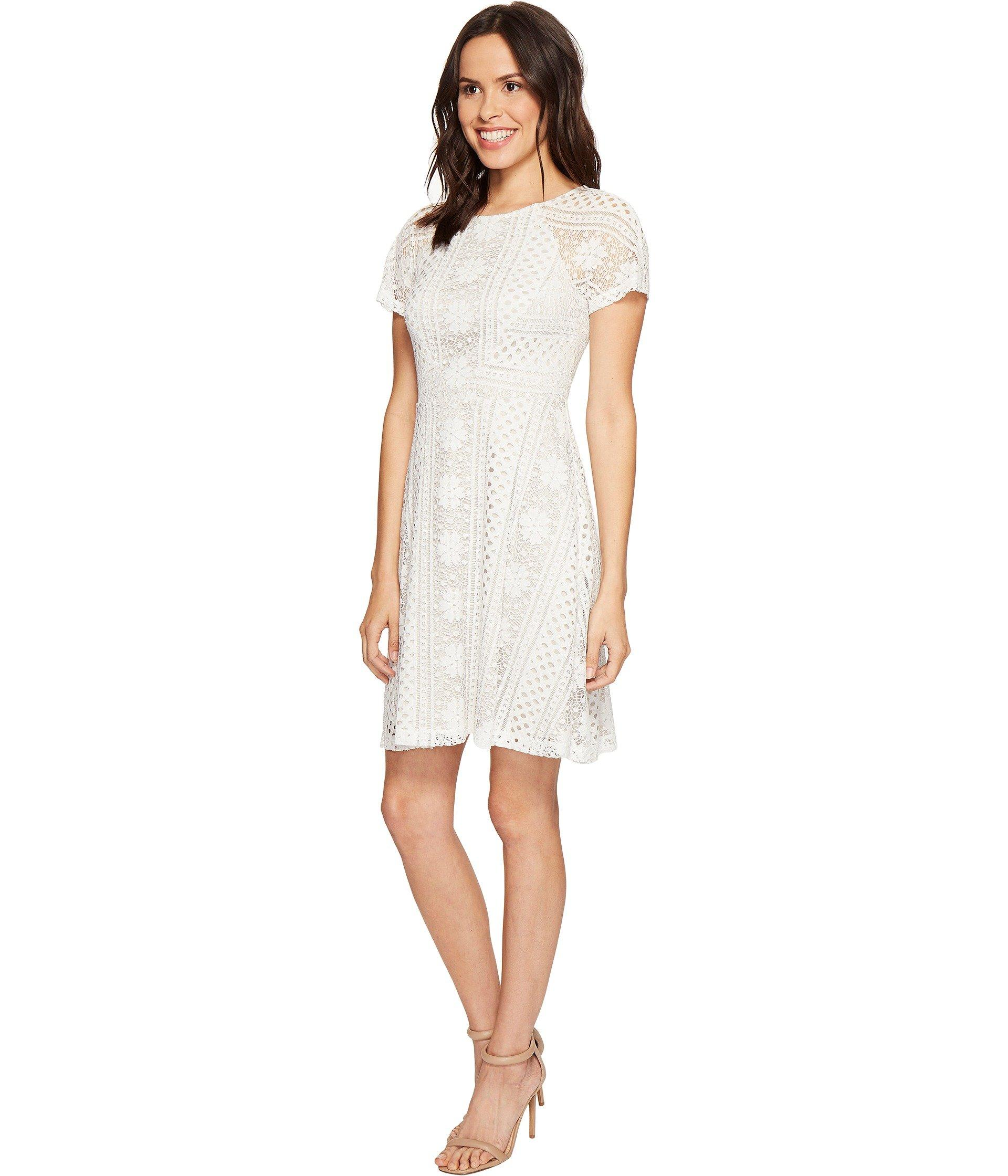Adrianna Papell Verona Striped Lace Spliced Fit And Flare
