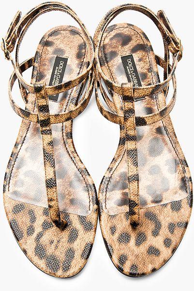 Dolce Amp Gabbana Brown Leather Leopard Spot Flat Sandals In