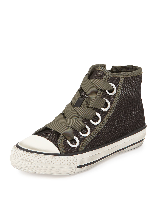 ash venus snake print high top sneaker in gray lyst. Black Bedroom Furniture Sets. Home Design Ideas
