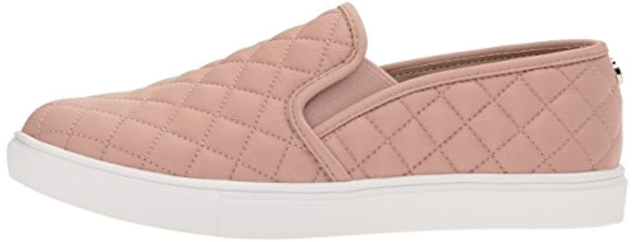 Steve Madden Leather Ecentrcq Sneaker