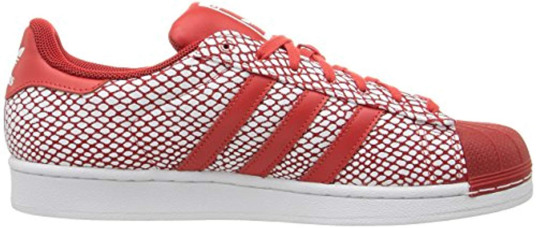 adidas superstar red snake amazon