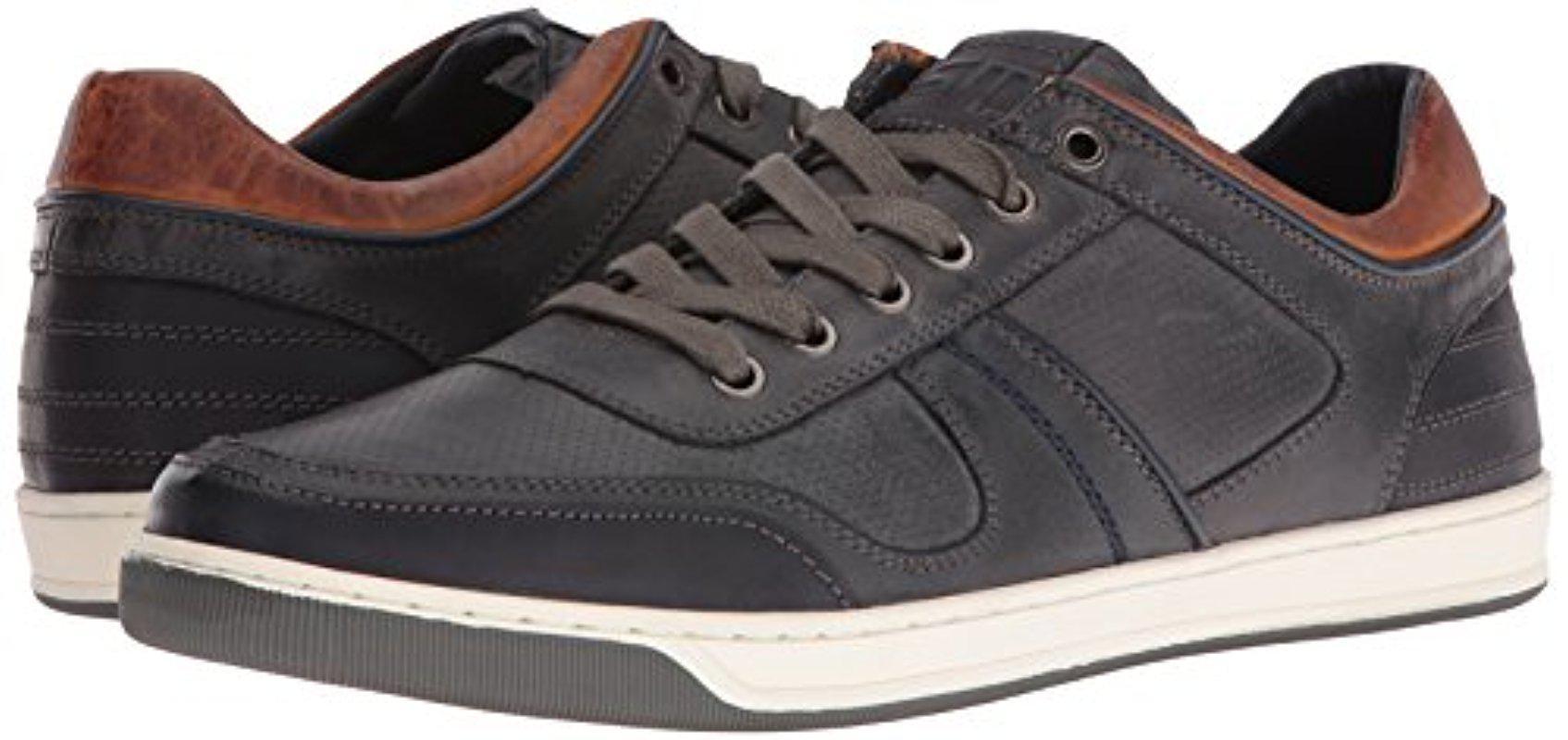 Steve Madden Cantor Fashion Sneaker