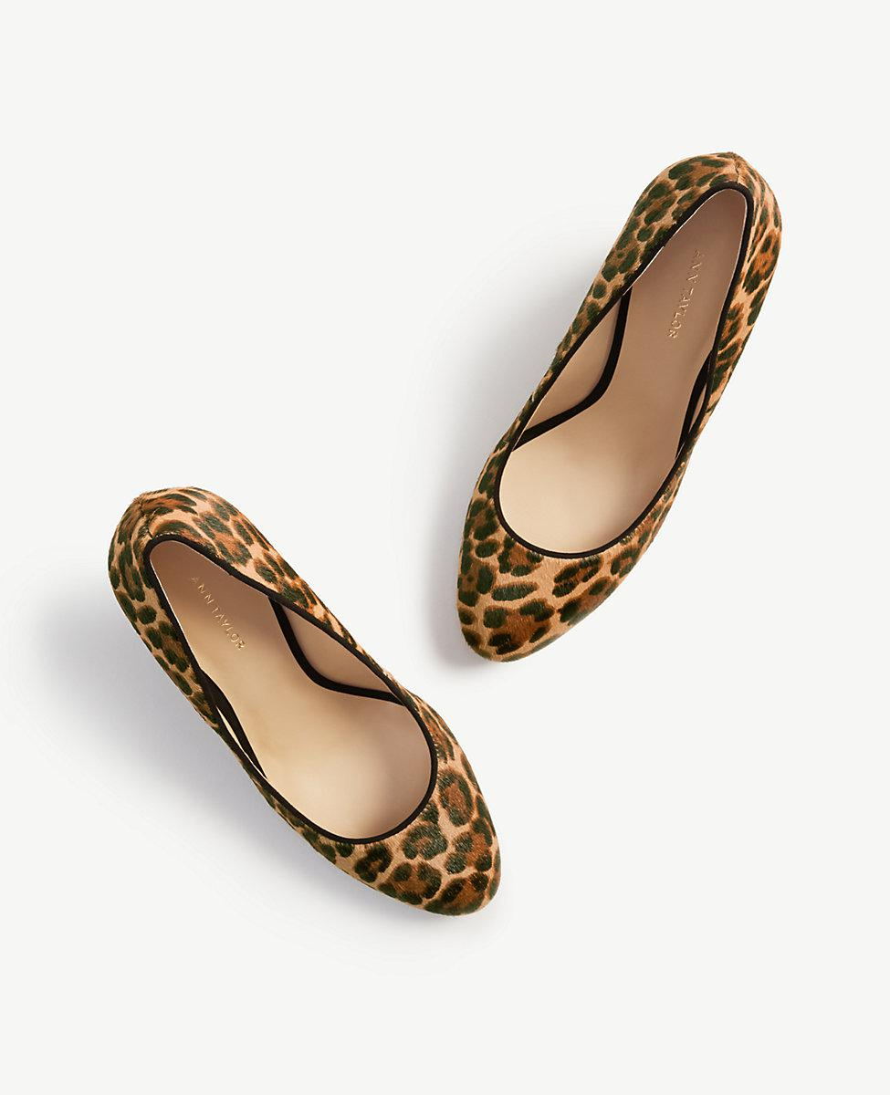 570d1038bbc Lyst - Ann Taylor Molly Leopard Print Haircalf Wedge Pumps in Brown