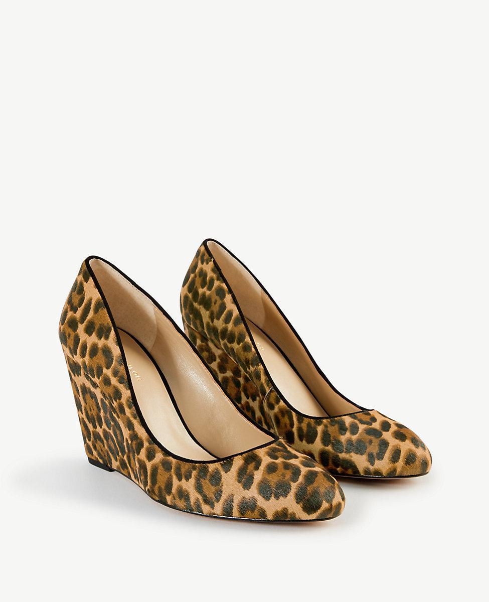 2fa9c1f8e46 Ann Taylor Molly Leopard Print Haircalf Wedge Pumps in Brown - Lyst