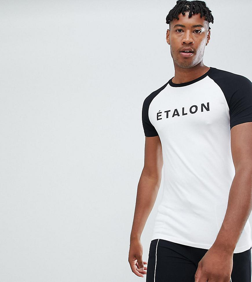 1da4fd9e4 ASOS Tall Muscle Fit Raglan T-shirt With French Slogan Print in ...