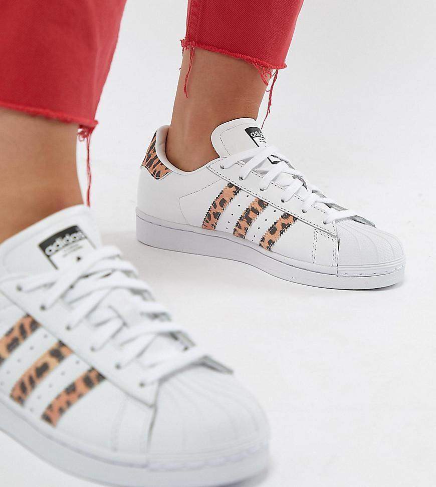 e48b7331f66 Lyst - adidas Originals Superstar Sneakers With Leopard Print Trim ...