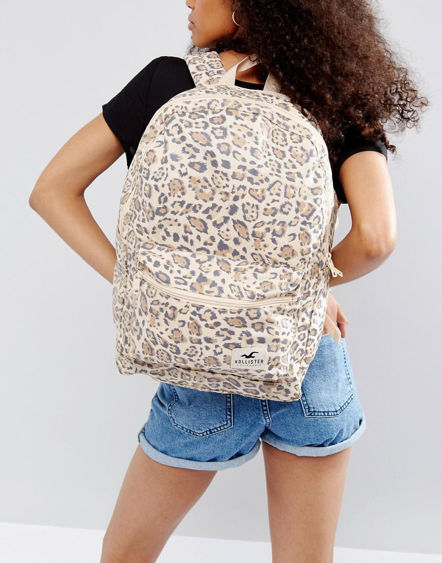 Hollister Core Canvas Backpack in Brown