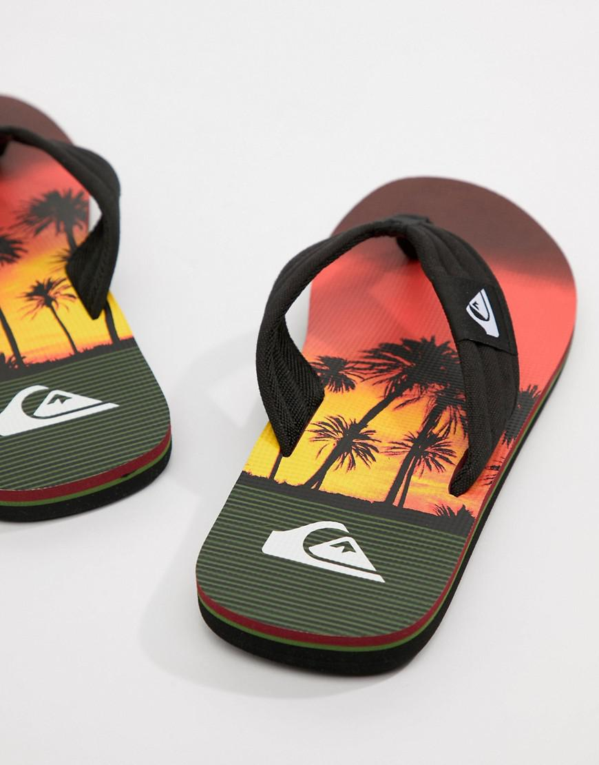 Quiksilver Molokai Flip Flop In Sunset Palm Tree Print aNXsq