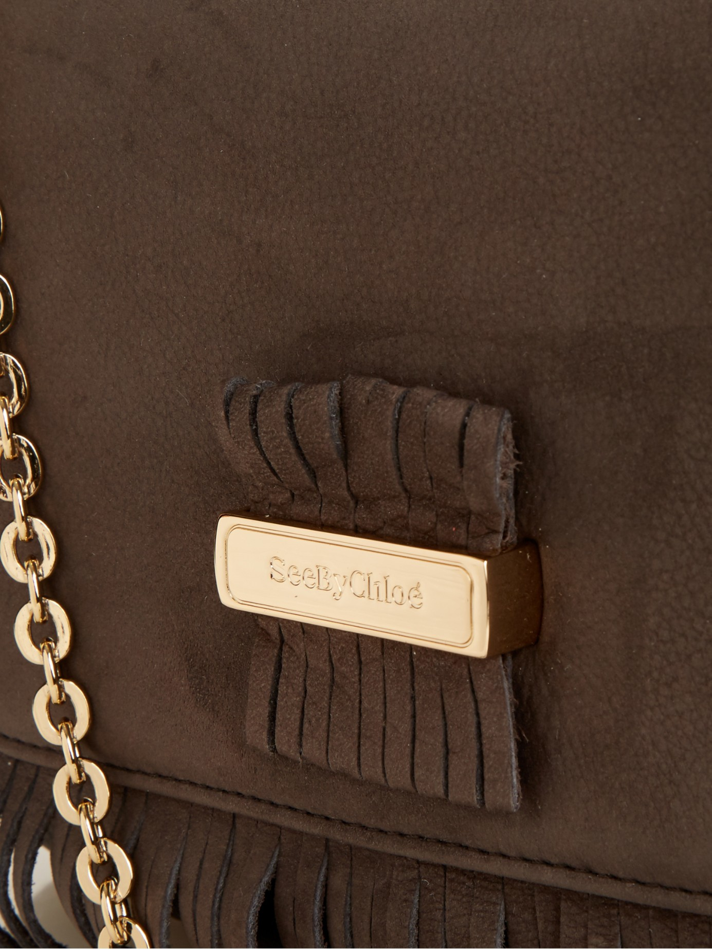 See By Chloé Rosita Fringed Leather Cross-Body Bag in Dark Grey (Grey)