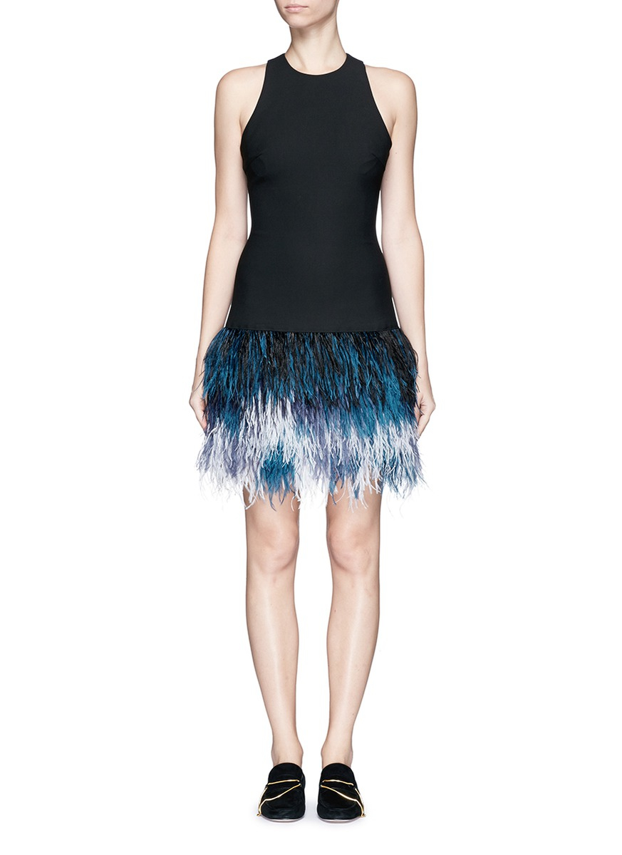 Ombre Feather Dress