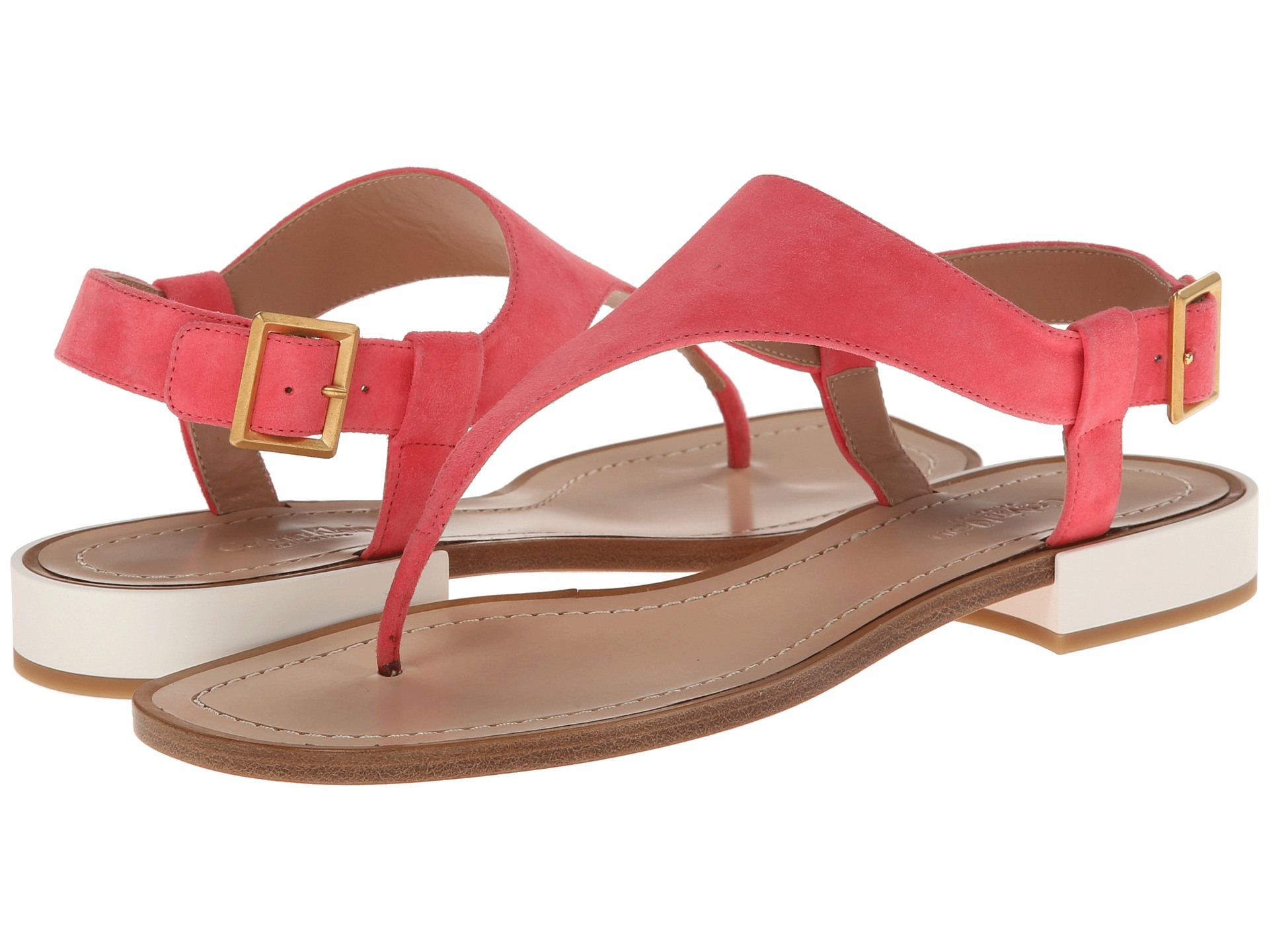 Womens Sandals Calvin Klein Collection Sibil 1 Watermelon