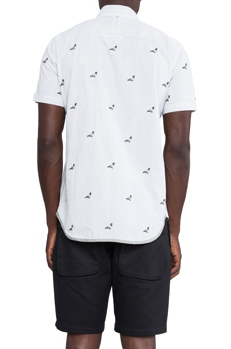 staple all pigeon button in white for lyst