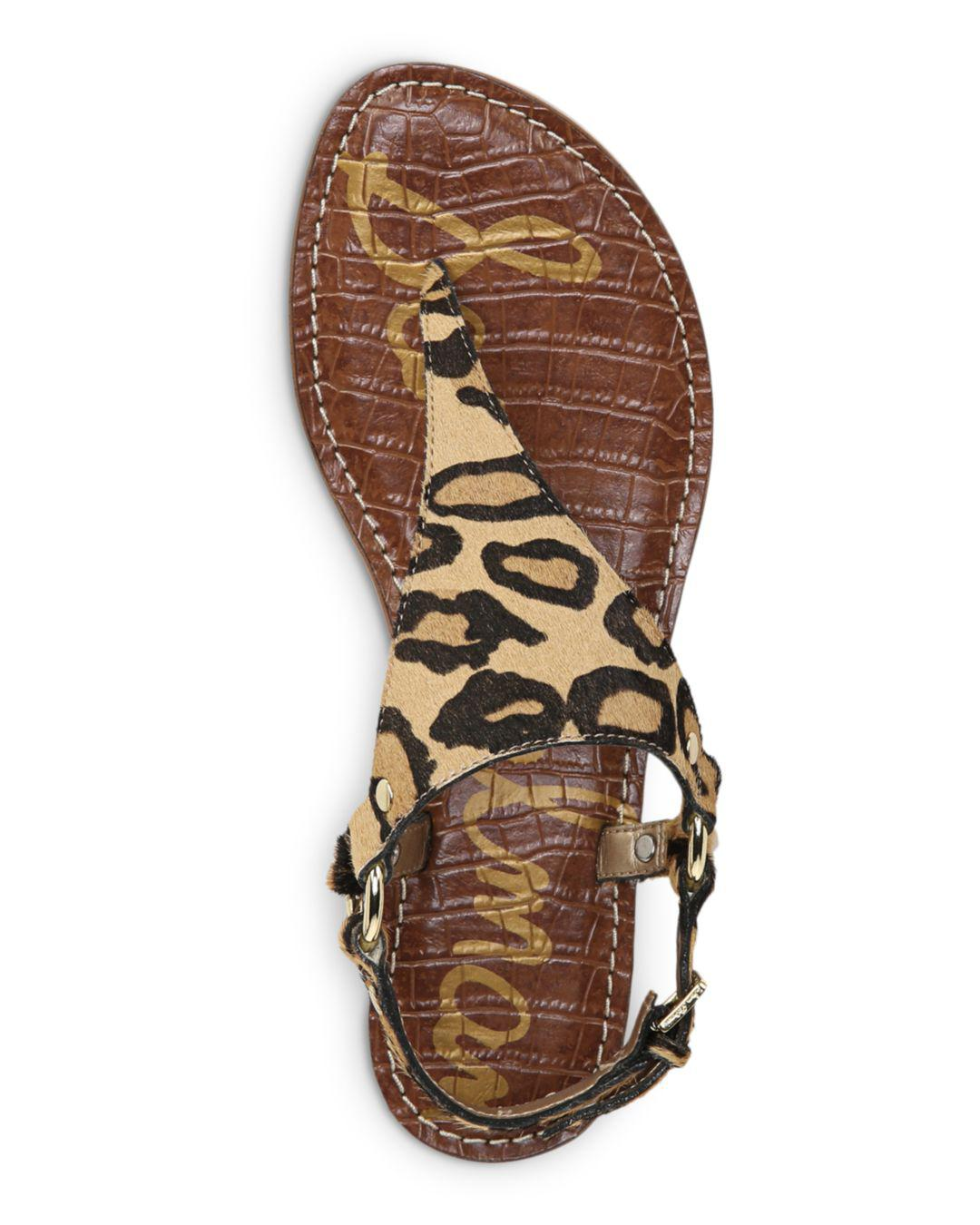 c2d84db8cd44 Lyst - Sam Edelman Women s Jude Leopard Print Calf Hair Thong ...