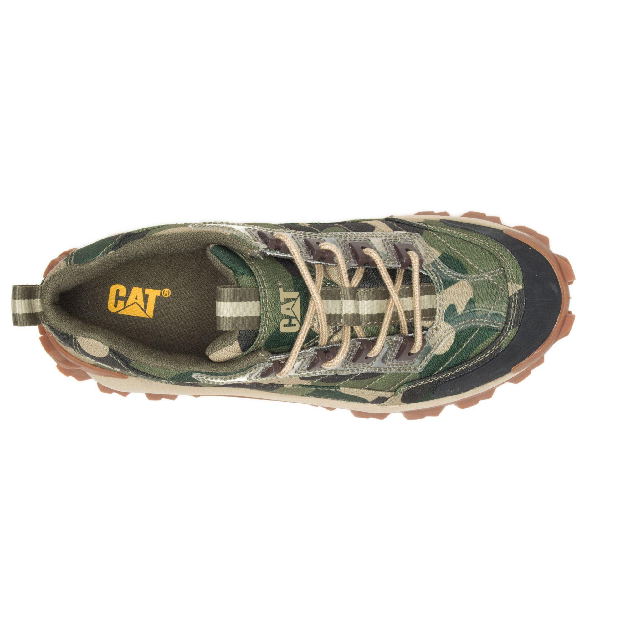 cat intruder boots
