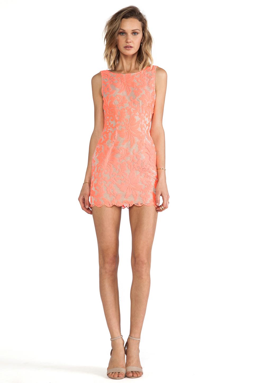 Farrow Lace Dress