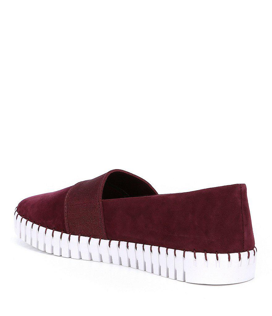 63eb2a402fc Steve Madden Red Steven By Nc-sugar Kid Suede Sneakers