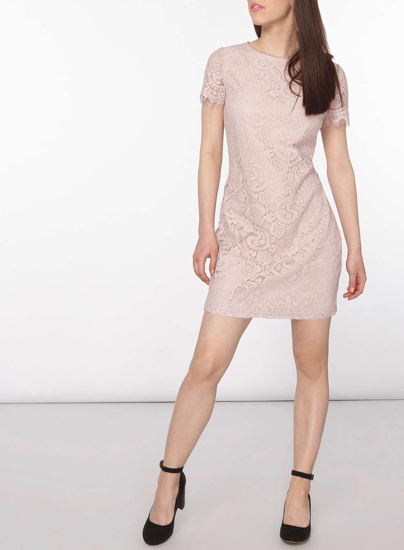Dorothy Perkins Womens Petite Blush Lace Shift Dress- Free Shipping Cheap Online kJ44RH1U