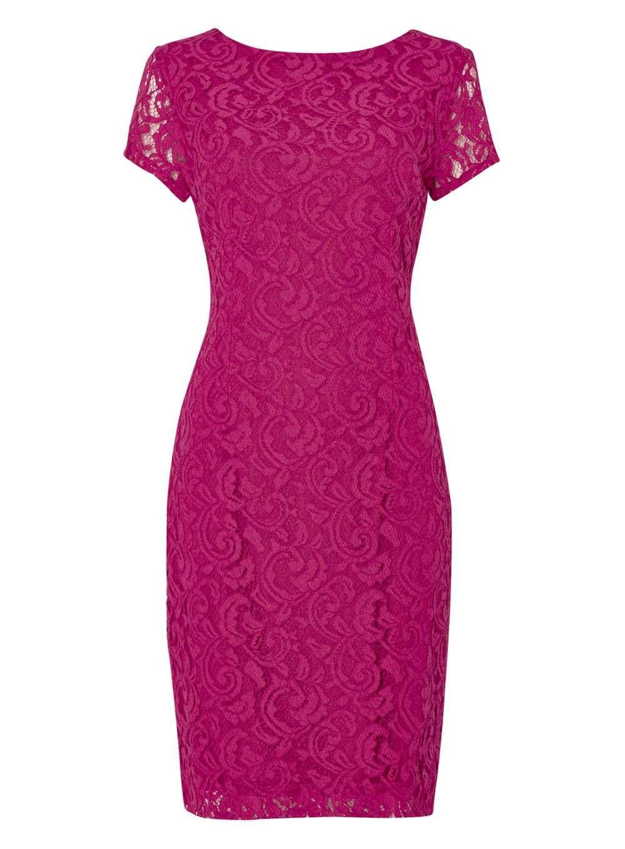 Dorothy perkins roman originals magenta lace v back dress in pink