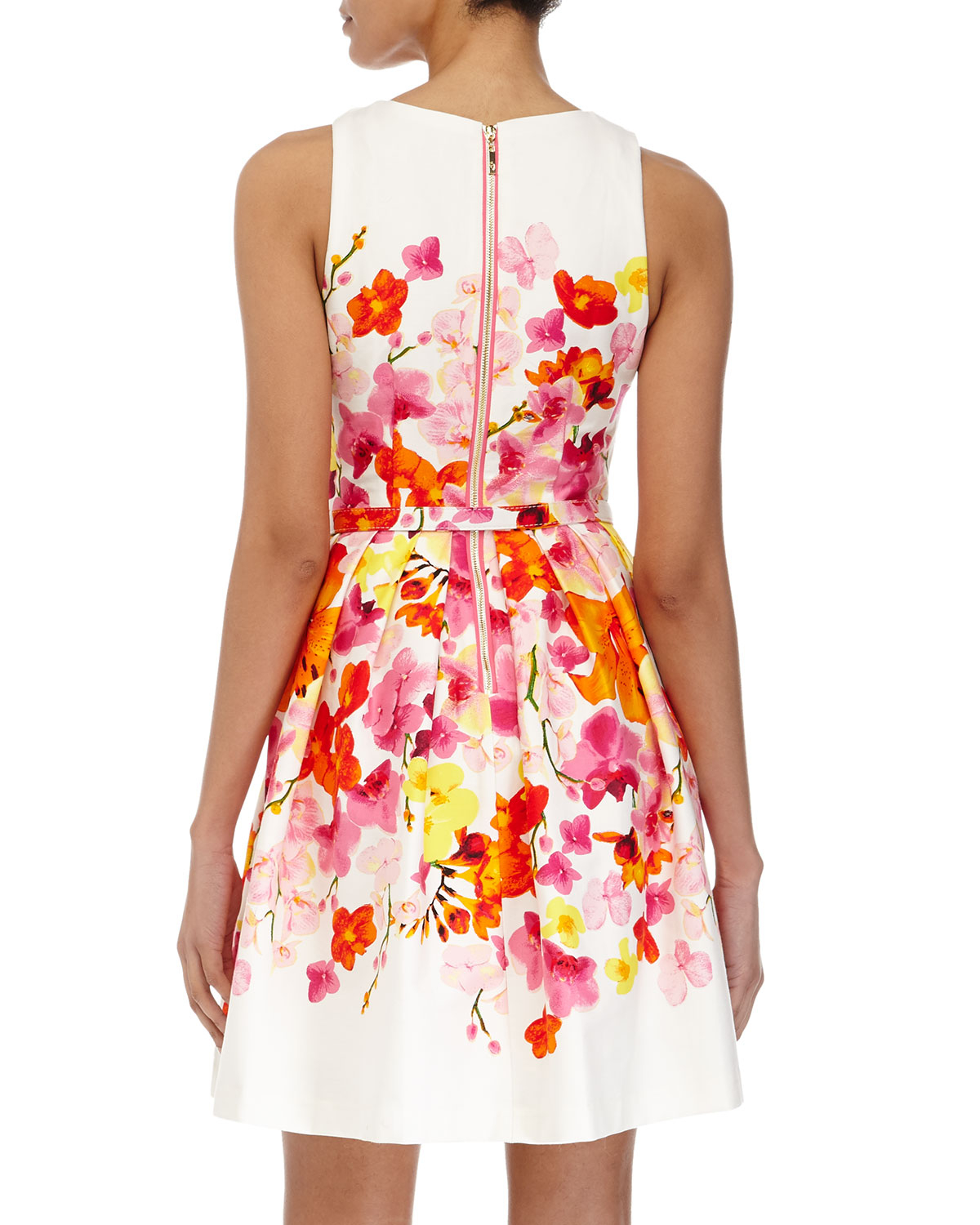 df47895d03 Eliza J Floral Belted Fit-And-Flare Dress - Lyst