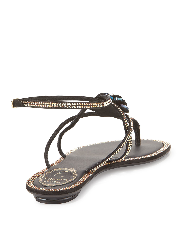 4992b542332bf3 Lyst - Rene Caovilla Floral Crystal-trim Flat Thong Sandal in Black