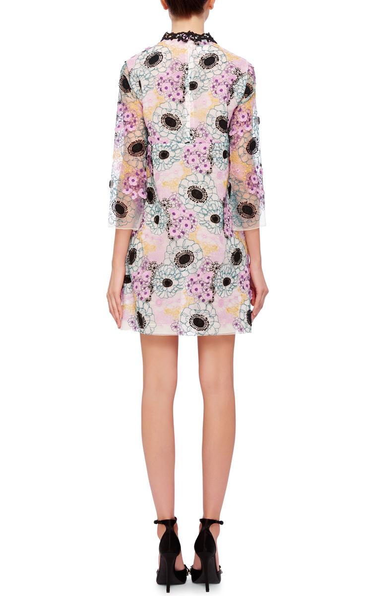 Giamba floral embroidered mini dress in multicolor multi