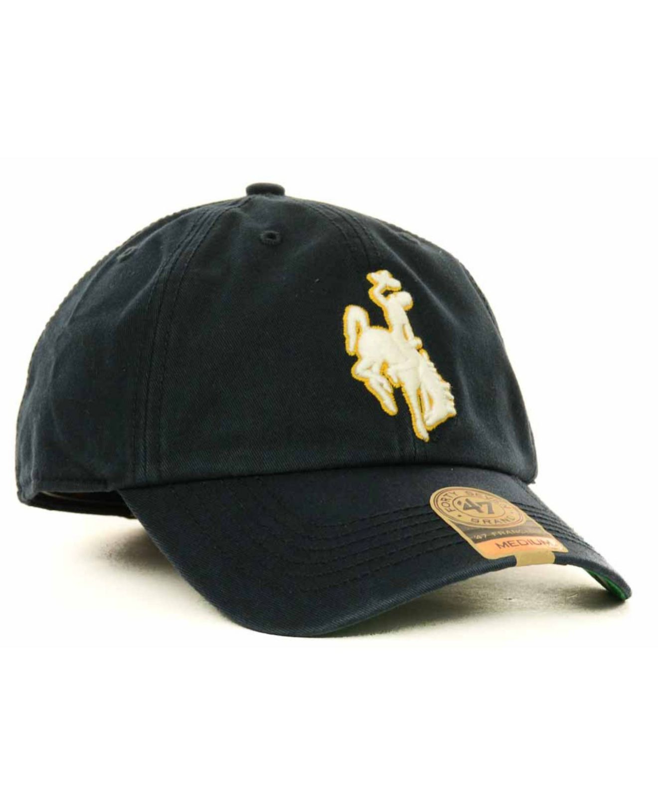 47 Brand Blue Wyoming Cowboys Franchise Cap for men