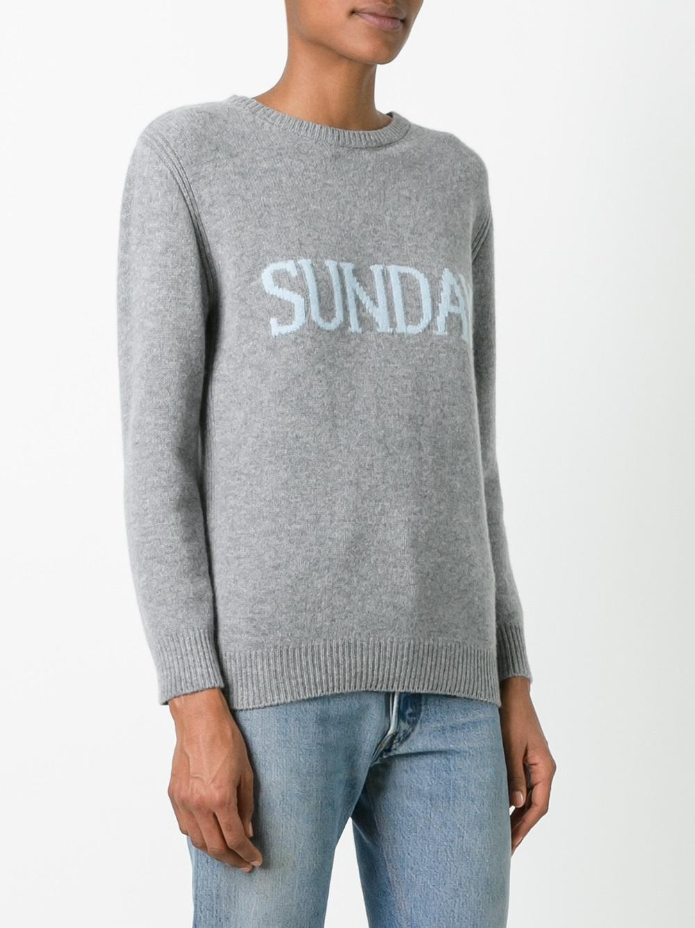 Alberta Ferretti Cashmere Sunday Jumper in Grey (Grey)