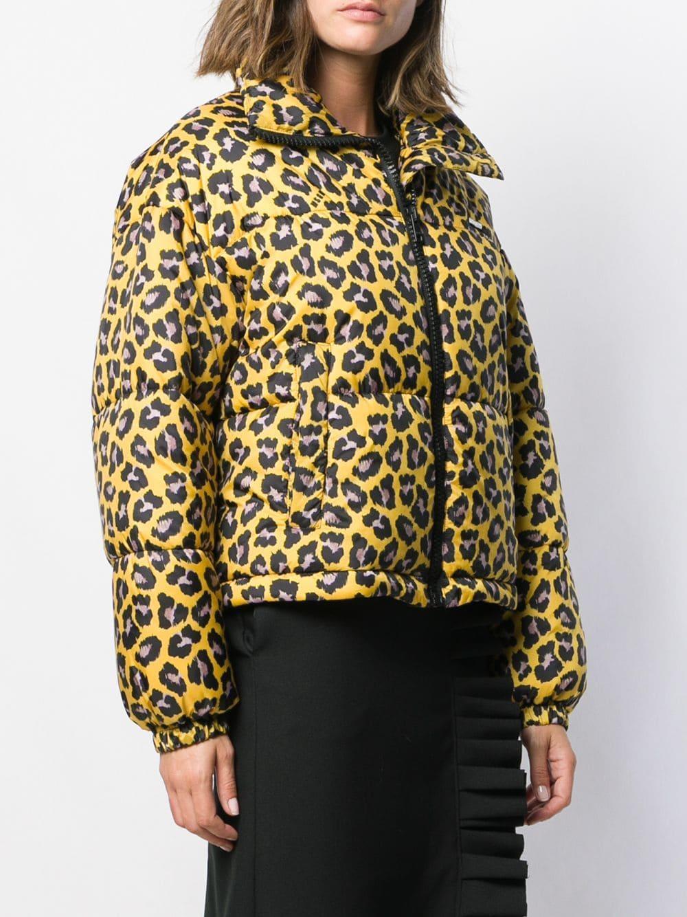 Chaqueta acolchada con estampado de leopardo MSGM de color Amarillo