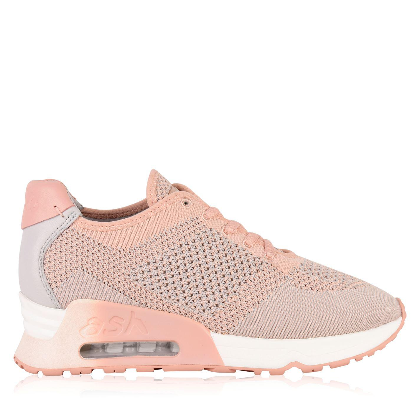 ash lucky knit trainers