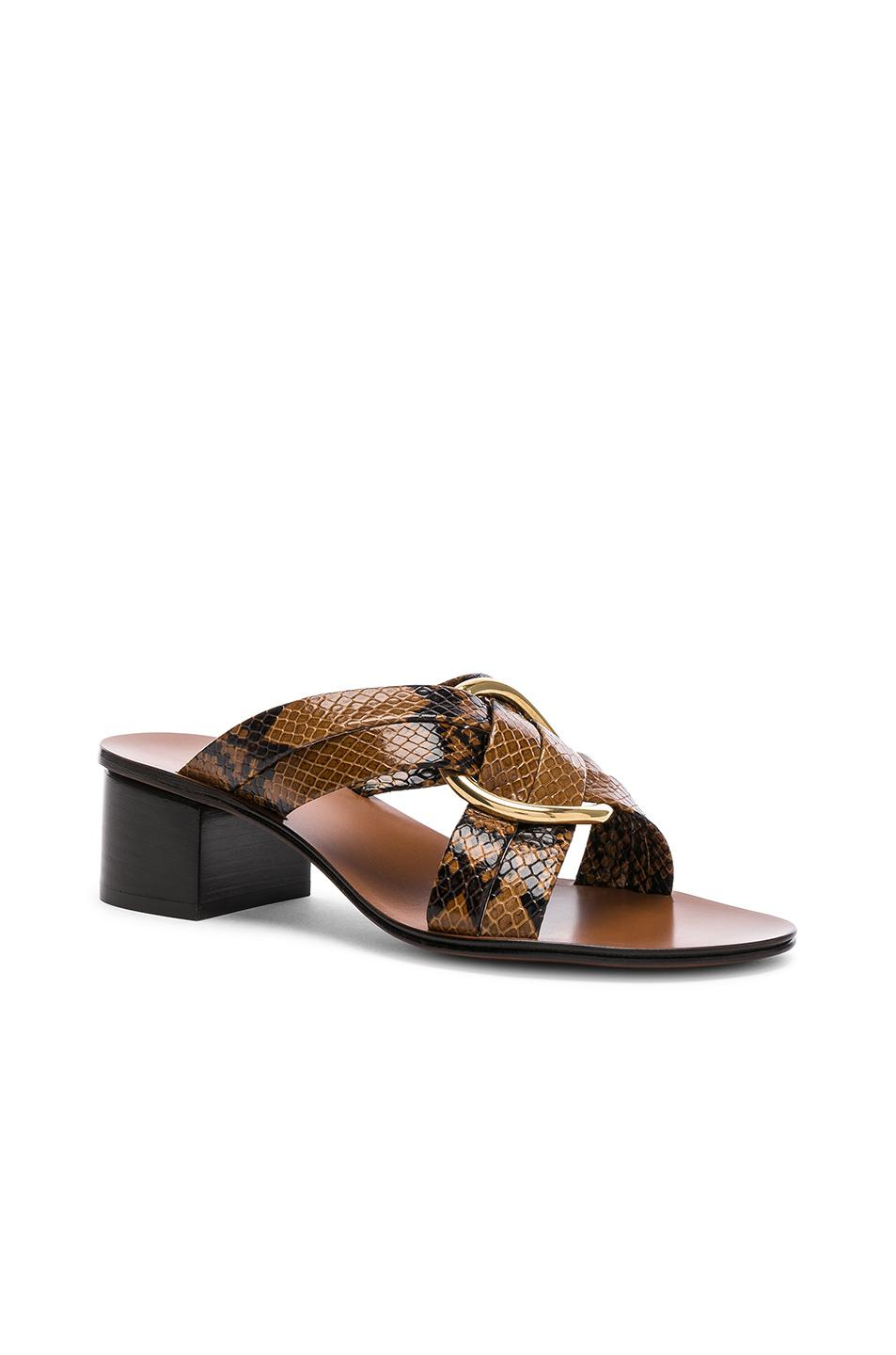 Chloé Rony Python Print Leather Cross Strap Mules in ,Animal Print.