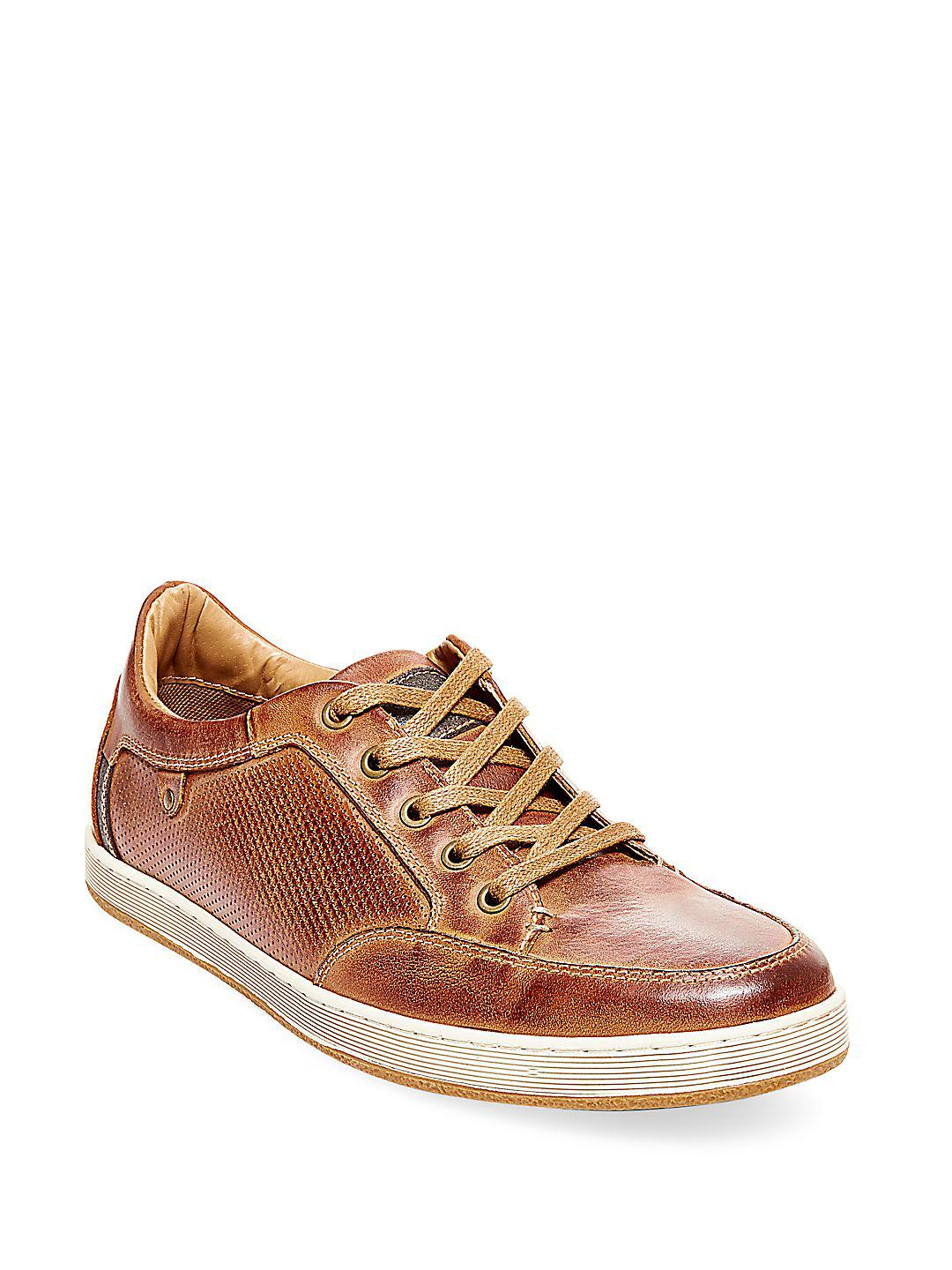 f00ac9d1840 Steve Madden Brown Partikal Perforated Leather Sneakers for men