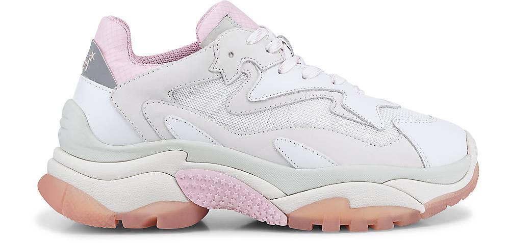 Ash , Sneaker Addict Bis in Weiß  PNIQR