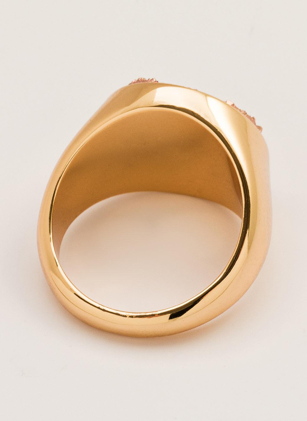 Gorjana & Griffin Astoria Statement Ring in Gold (Metallic)