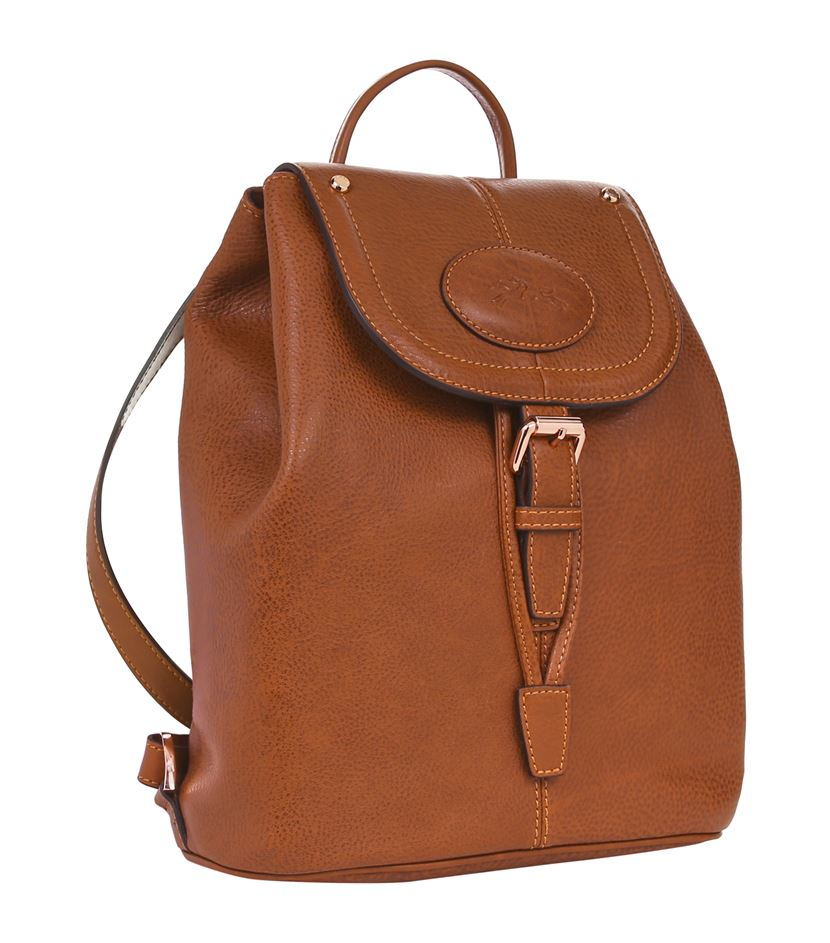 Longchamp Leather Mystery Medium Backpack in Brown