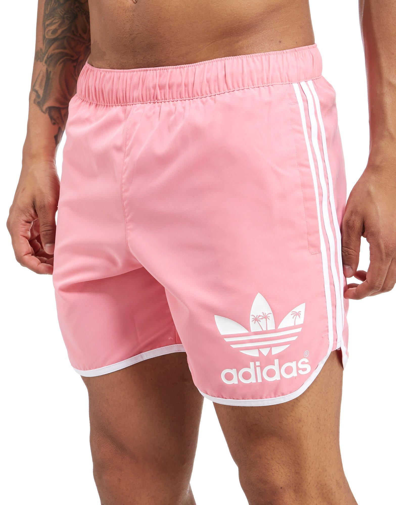 Adidas Pink Palm Lyst Originals For Men In Shorts QshorxBtCd