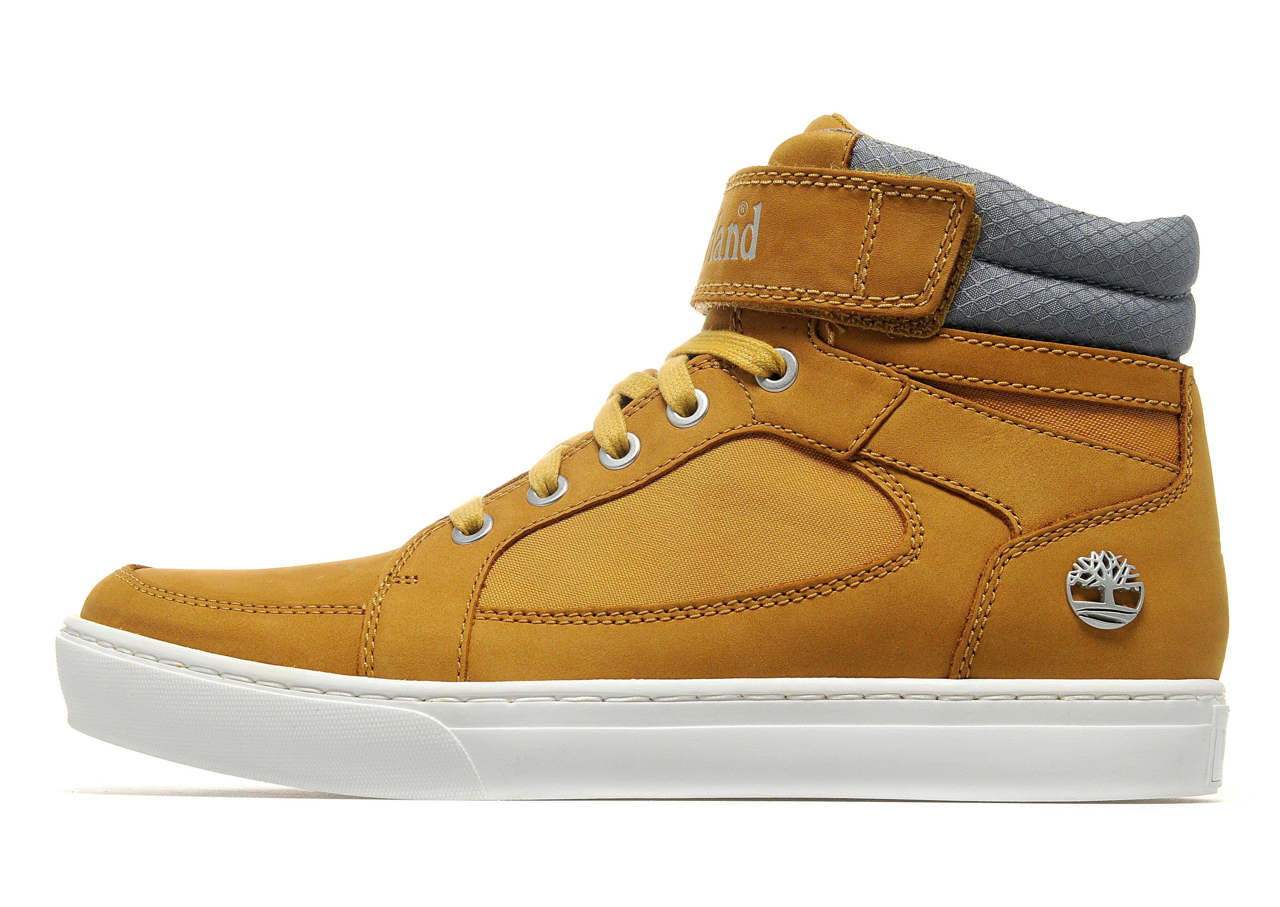 Timberland Ortholite Mens Shoes