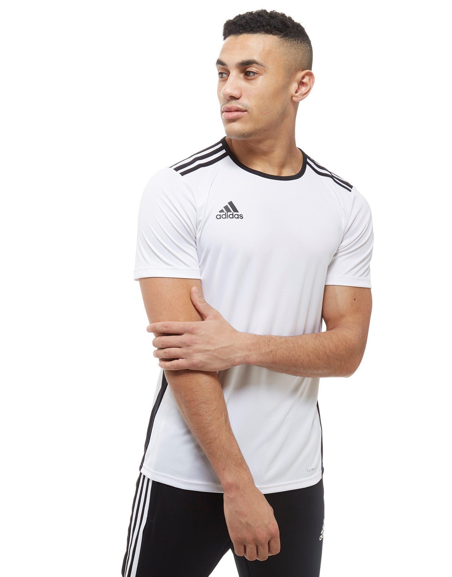 Adidas White Entrada 18 T shirt for men
