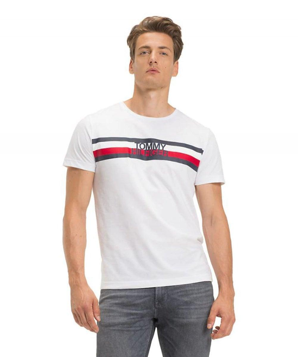 44393f8f Tommy Hilfiger Big & Tall Organic Cotton Logo T-shirt in White for Men -  Save 56% - Lyst