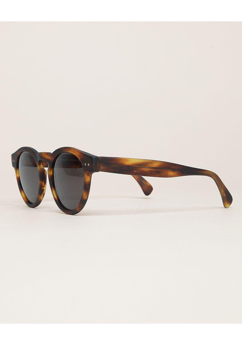 Illesteva Leonard Sunglasses in Brown