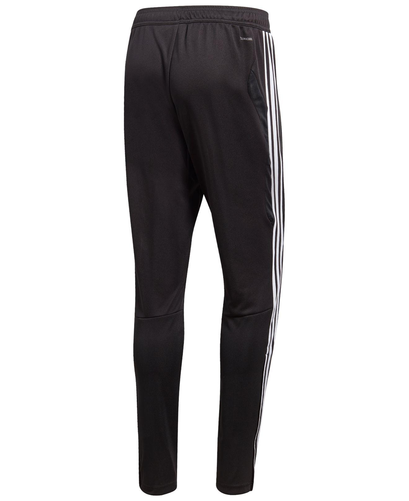 c3ceae50b Lyst - adidas Tiro 19 Climacool® Soccer Pants in Black for Men