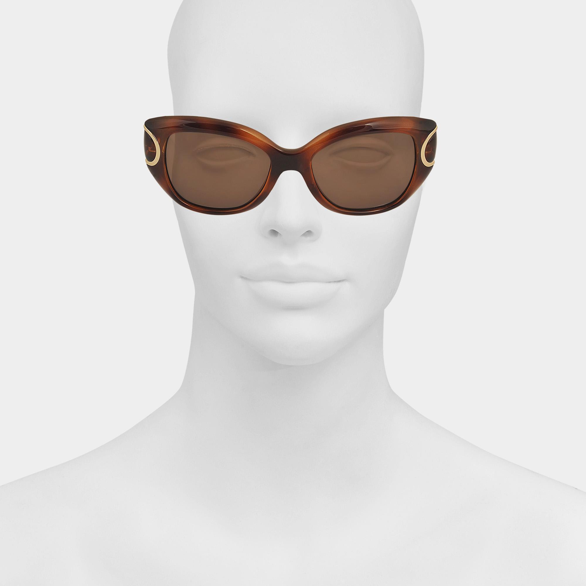 Ferragamo Sf819s Signature Sunglasses in Brown