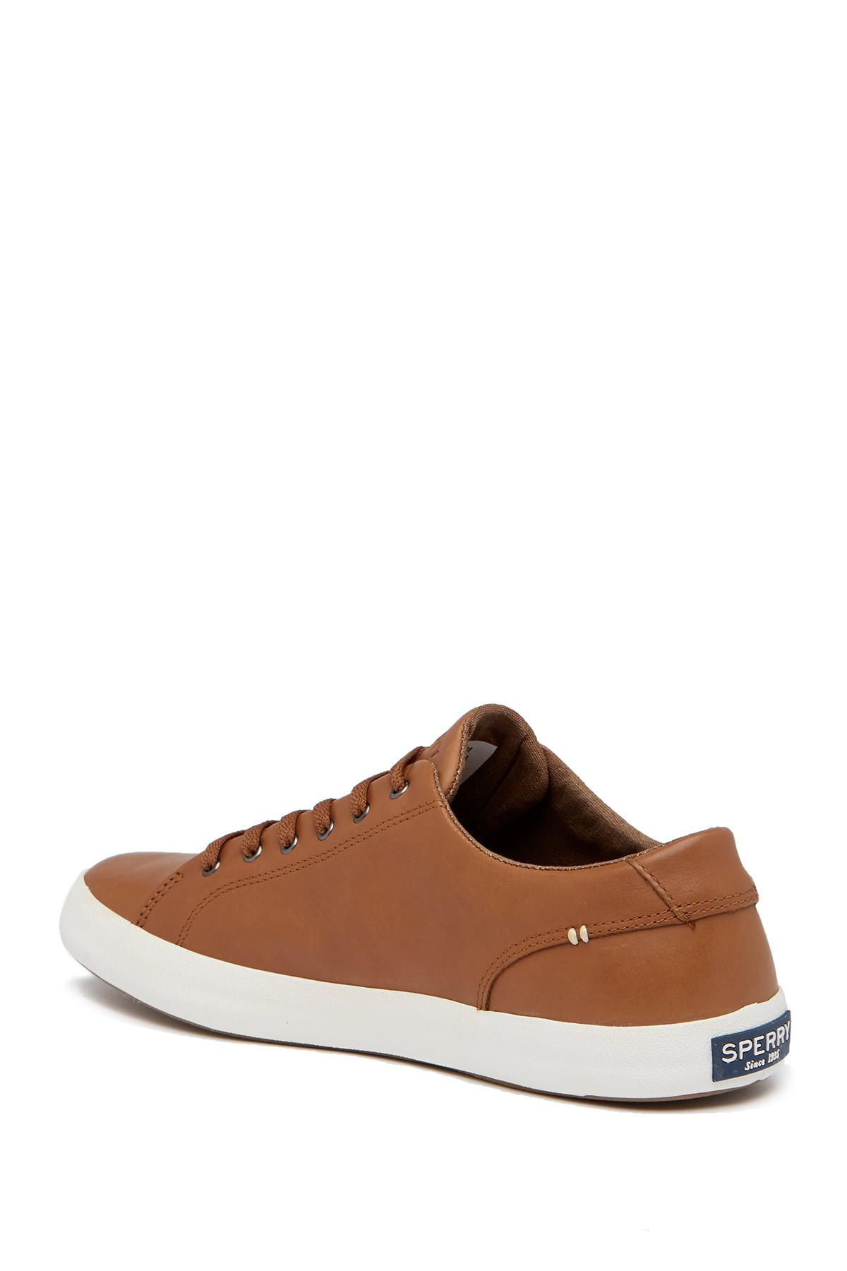 Sperry High Top Leather Shoes
