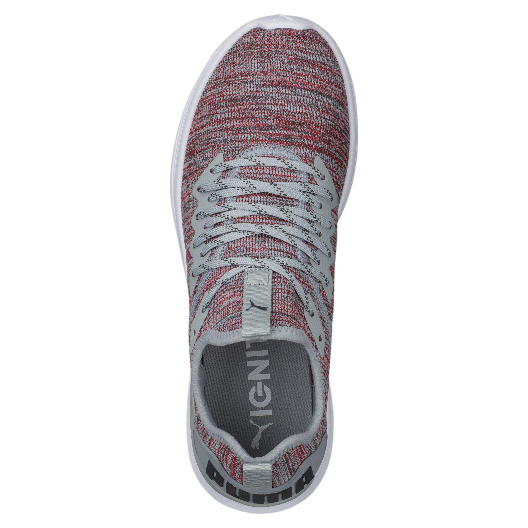 differently a9ae9 7a7b5 PUMA Multicolor Ignite Flash Evoknit Men's Training Shoes for men