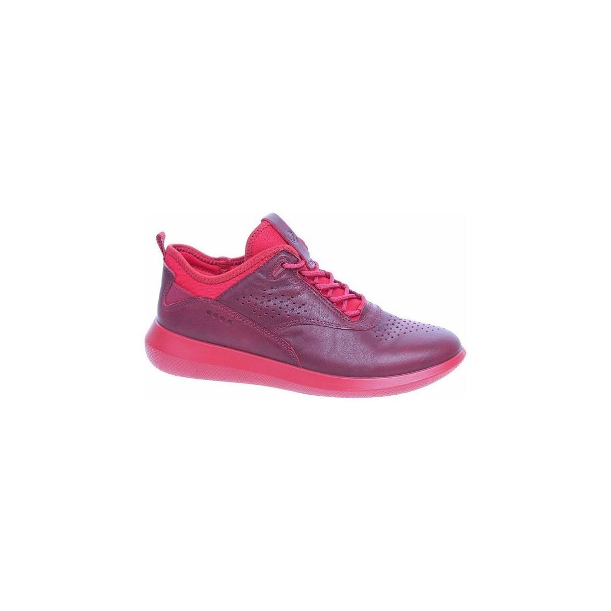 Ecco Scinapse Women's Shoes (trainers) In Multicolour in Pink