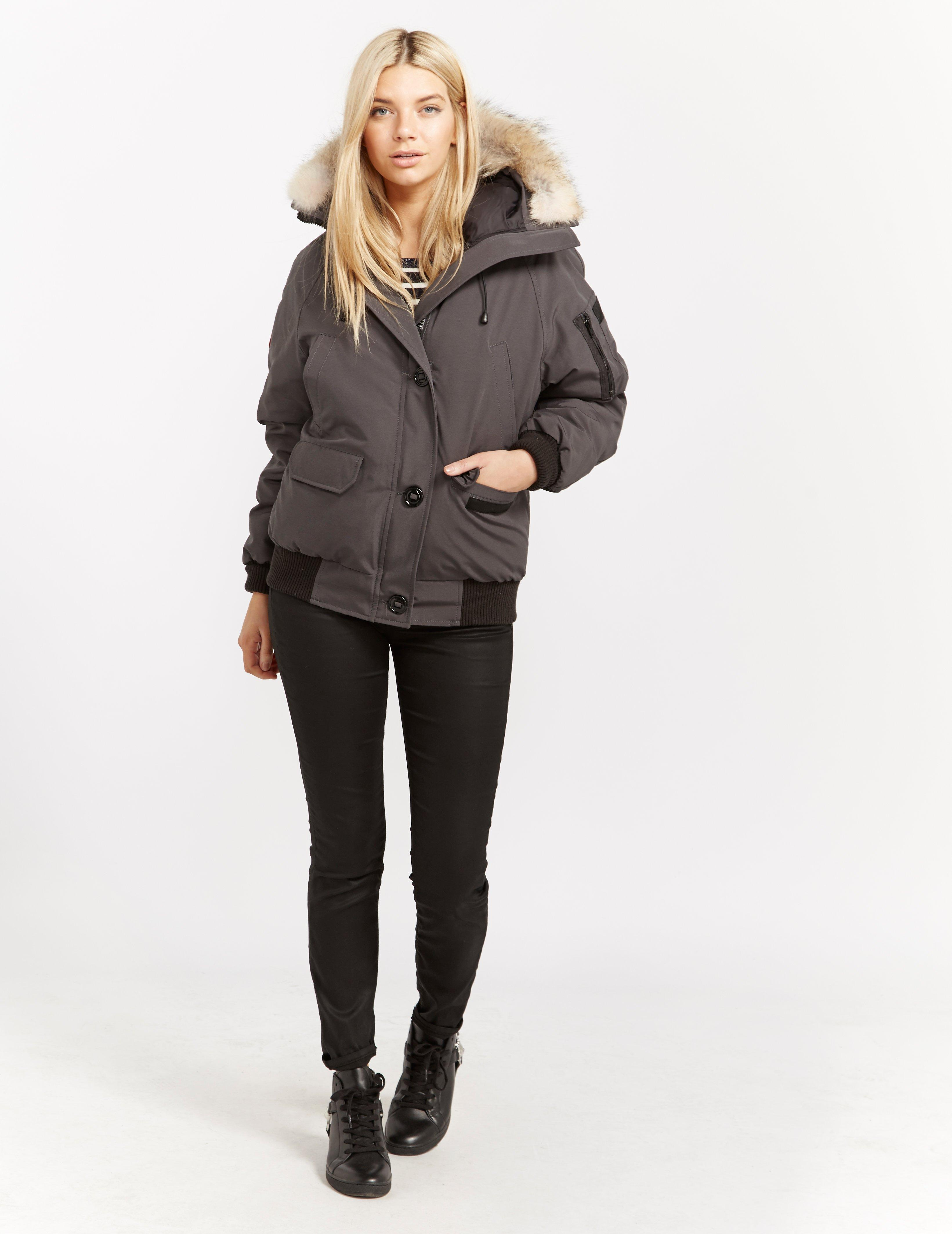 Canada Goose Womens Chilliwack Padded Bomber Jacket Grey in Gray - Lyst 05a02e3370
